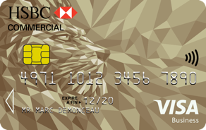 Carte Visa Gold Business